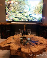 Epoxy Olive Wood Log Coffee Table No 2